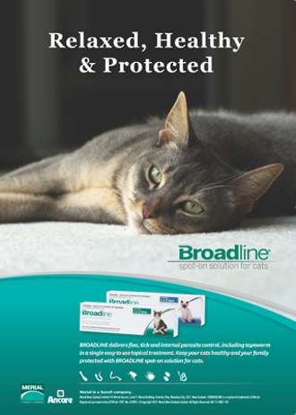 Broadline Complete Flea and Worm Treatment for Cats 0.8-2.4kg