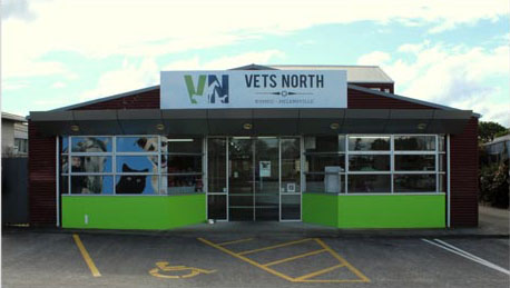 Vets North Kumeu