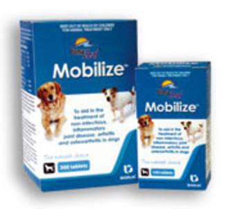 Bomazeal Mobilize 300's