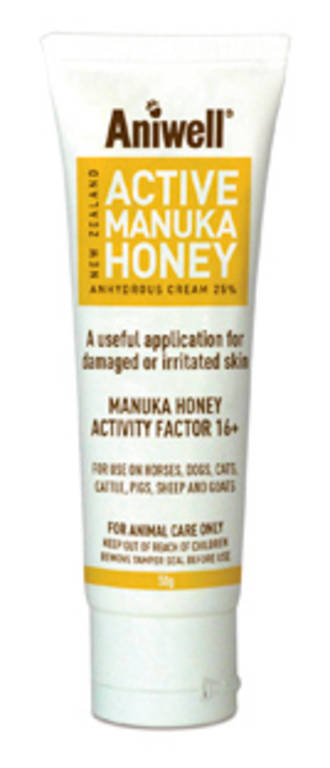 Active Manuka Honey Ointment 100gm